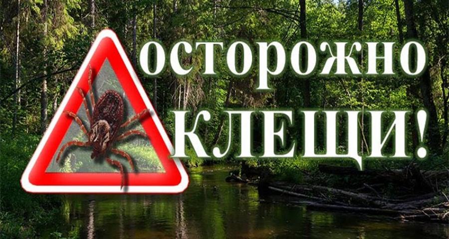 Осторожно: клещи!